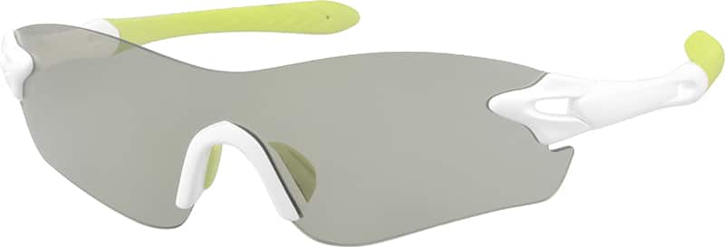 a10160130-sunglasses