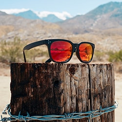Desert Collection Zenni glasses on the wood