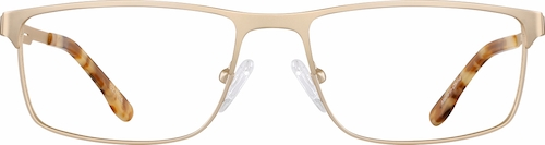 Gold Rectangle Glasses