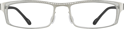 Silver Rectangle Glasses